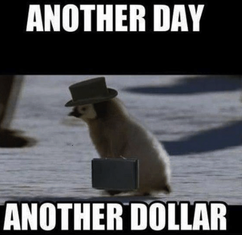 another day another dollar penguin meme